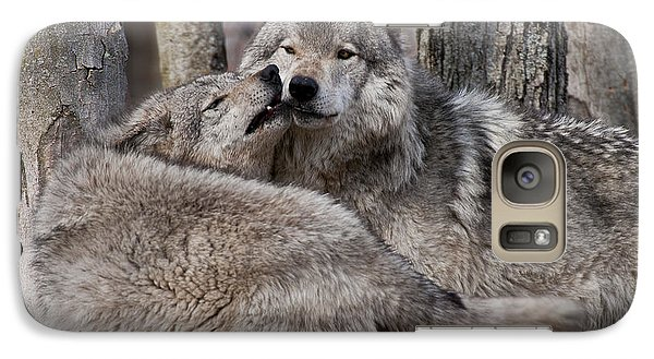 Galaxy Case featuring the photograph Timber Wolves Playing by Wolves Only