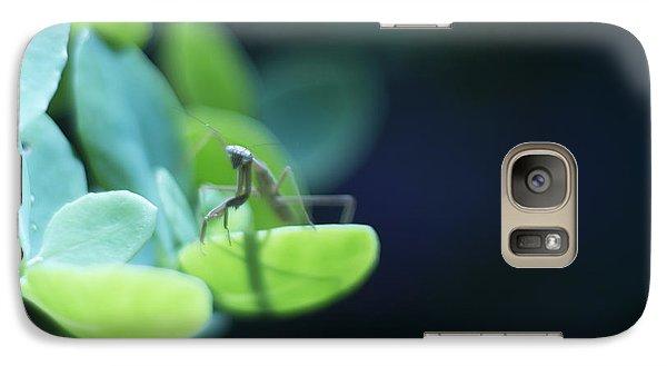 Galaxy Case featuring the photograph Tiny Praying Mantis On Sedum by Rebecca Sherman