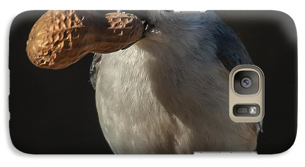 Galaxy Case featuring the photograph Titmouse And Peanut by Jim Moore
