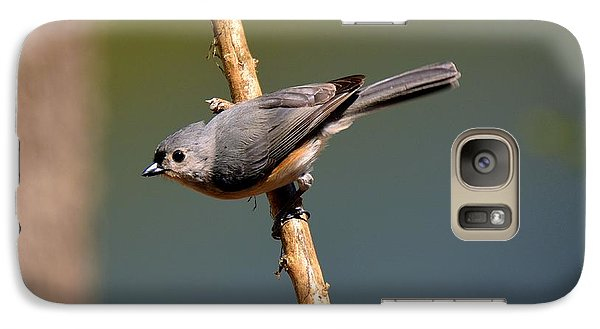 Galaxy Case featuring the photograph Titmouse by Lisa L Silva