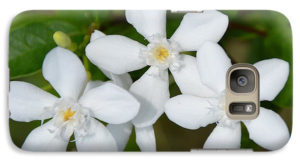 Galaxy Case featuring the photograph Togetherness by Darla Wood