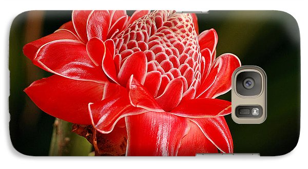 Galaxy Case featuring the photograph Torch Ginger by Lorenzo Cassina