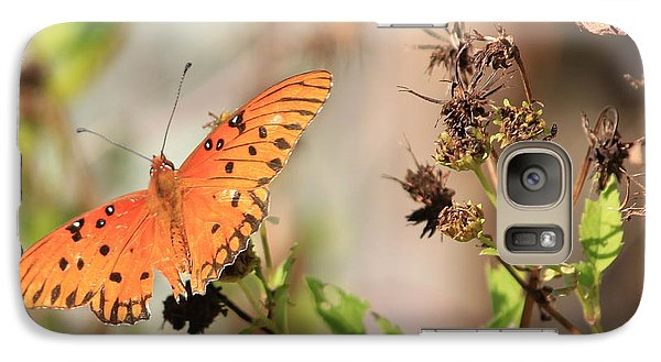 Galaxy Case featuring the photograph Torn Wing And Dry Flowers by Cyril Maza