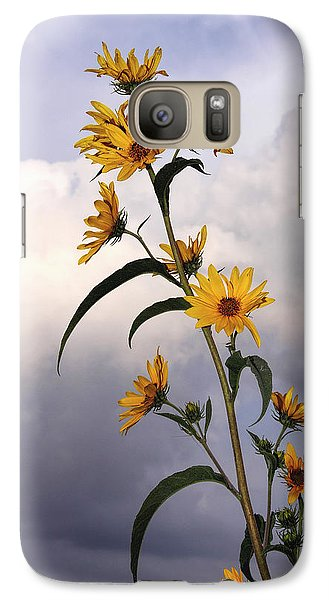 Galaxy Case featuring the photograph Towering Sunflowers by Rob Graham