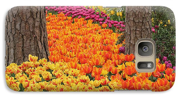 Galaxy Case featuring the photograph Trail Of Tulips by Robert Camp