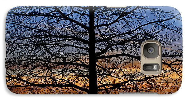 Galaxy Case featuring the photograph Tree At Sunset by Daniel Woodrum