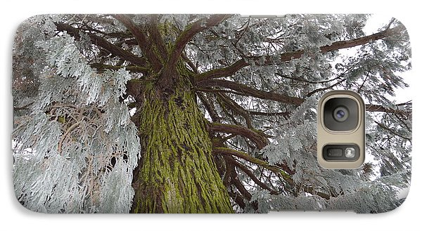 Galaxy Case featuring the photograph Tree In Winter by Felicia Tica