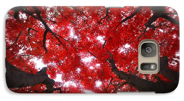 Galaxy Case featuring the photograph Tree Light - Maple Leaves Fall Autumn Red by Jon Holiday