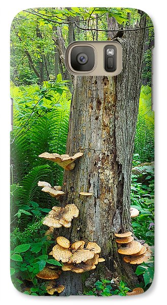 Galaxy Case featuring the photograph Tree Remnant by Lars Lentz
