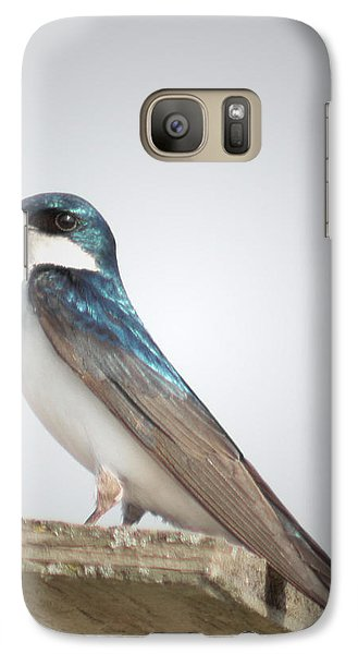 Galaxy Case featuring the photograph Tree Swallow Portrait by Anita Oakley