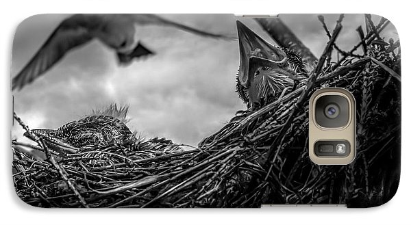 Tree Swallows In Nest Galaxy S7 Case