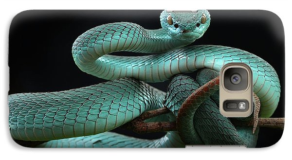 Trimeresurus Insularis [blue] Galaxy S7 Case