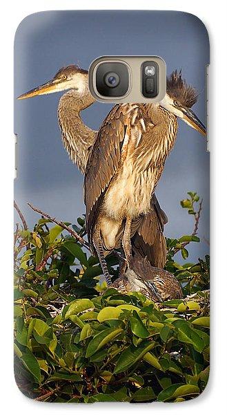 Trio Of Blue Heron Chicks Galaxy S7 Case