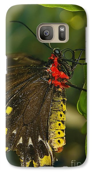 Galaxy Case featuring the photograph Troides Helena Butterfly  by Olga Hamilton