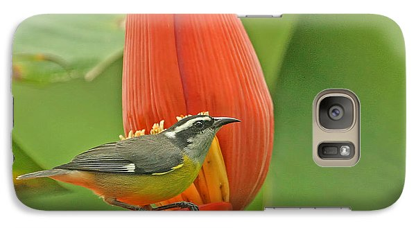 Galaxy Case featuring the photograph Tropical Birds - Bananaquit by Peggy Collins