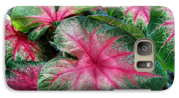 Galaxy Case featuring the photograph Tropical Delight by Kathy Baccari