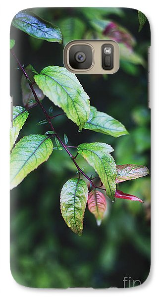 Galaxy Case featuring the photograph Tropical Forest by Heather Green