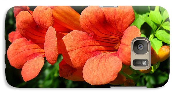 Galaxy Case featuring the photograph Wild Trumpet Vine by William Tanneberger