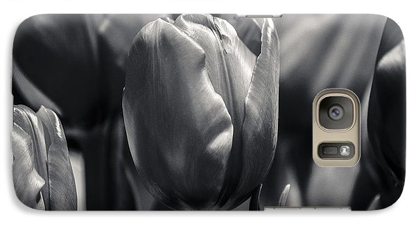 Galaxy Case featuring the photograph Tulip Hollywood Lighting by Craig Perry-Ollila