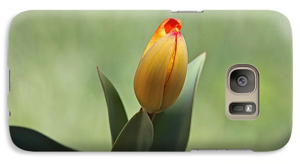Galaxy Case featuring the photograph New Beginning by Lisa L Silva