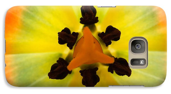 Galaxy Case featuring the photograph Tulip by Patricia Schaefer