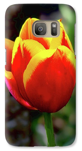 Galaxy Case featuring the photograph Tulip by Ron Roberts