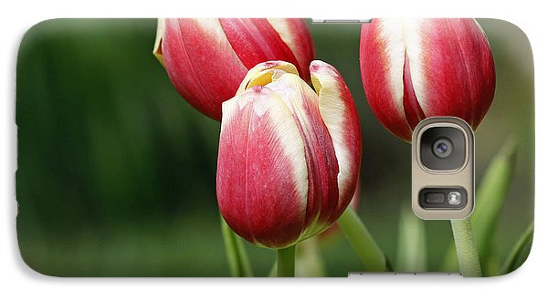 Galaxy Case featuring the photograph Tulips 1 by Denise Pohl