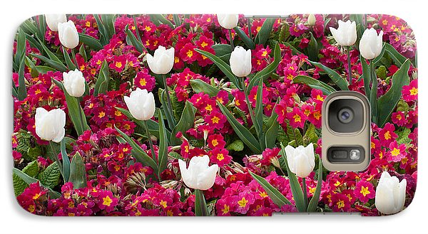 Galaxy Case featuring the photograph Tulips And Primroses by Geraldine Alexander