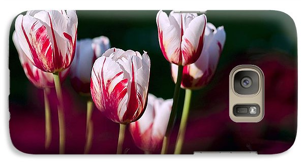 Galaxy Case featuring the photograph Tulips Garden Flowers Color Spring Nature by Paul Fearn