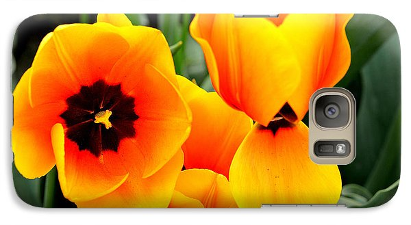 Galaxy Case featuring the photograph Tulips... by Jerry Cahill