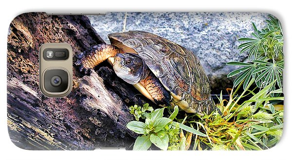 Galaxy Case featuring the photograph Turtle 1 by Dawn Eshelman