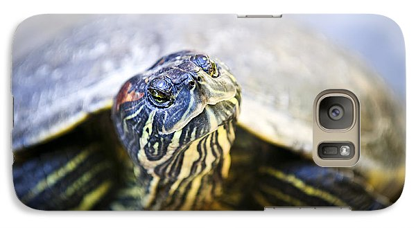 Turtle Galaxy S7 Case by Elena Elisseeva