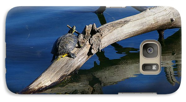 Galaxy Case featuring the photograph Turtle Sun by Tannis  Baldwin