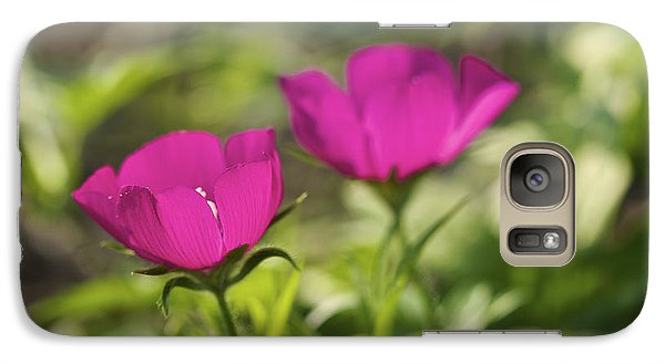 Galaxy Case featuring the photograph Twin Poppies - Poppy Mallow Art Print by Jane Eleanor Nicholas