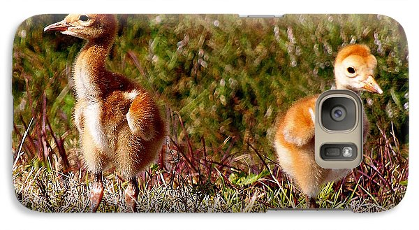 Galaxy Case featuring the photograph Twin Sandhill Chicks 000  by Chris Mercer