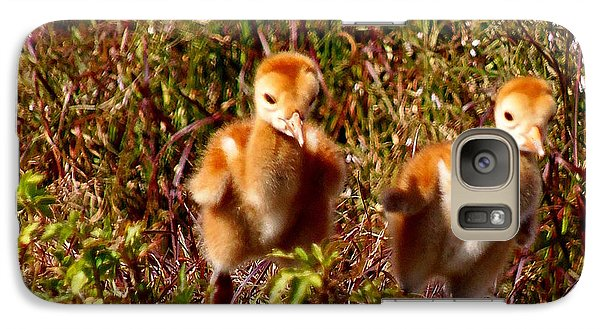 Galaxy Case featuring the photograph Twin Sandhill Chicks by Chris Mercer