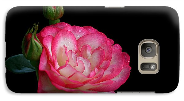Galaxy Case featuring the photograph Buddies by Doug Norkum