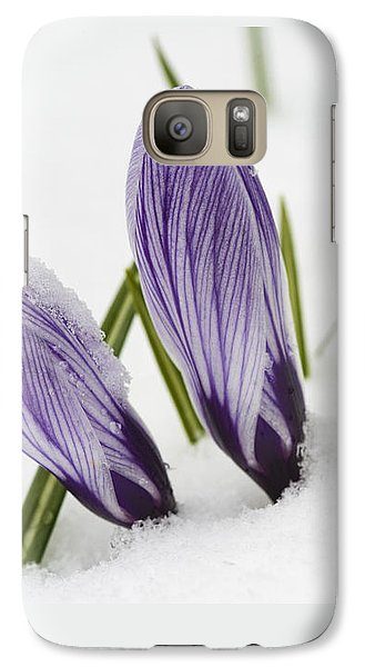 Two Purple Crocuses In Spring With Snow Galaxy S7 Case