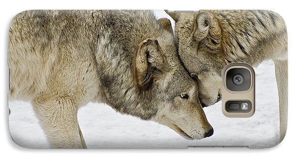 Galaxy Case featuring the photograph Two Wolves In  A Staredown by Gary Slawsky