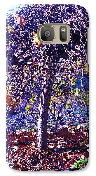Galaxy Case featuring the photograph Umbrella Tree In Fall by Suzanne McKay