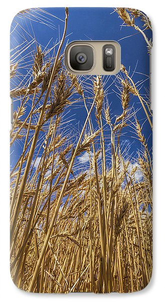 Galaxy Case featuring the photograph Under The Wheat by Rob Graham
