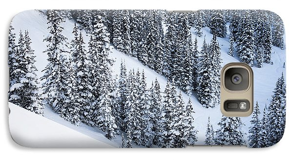 Galaxy Case featuring the photograph Valley Of Pines by The Forests Edge Photography - Diane Sandoval