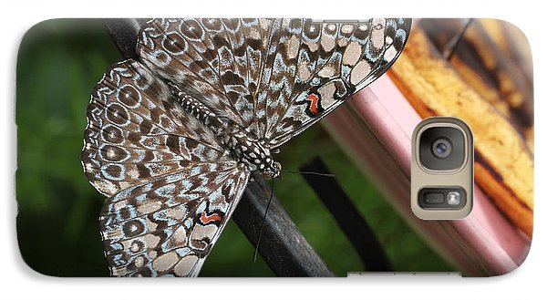 Galaxy Case featuring the photograph Variable Craker Butterfly #2 by Judy Whitton