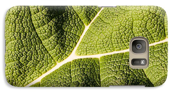 Galaxy Case featuring the photograph Veins Of A Leaf by John Wadleigh