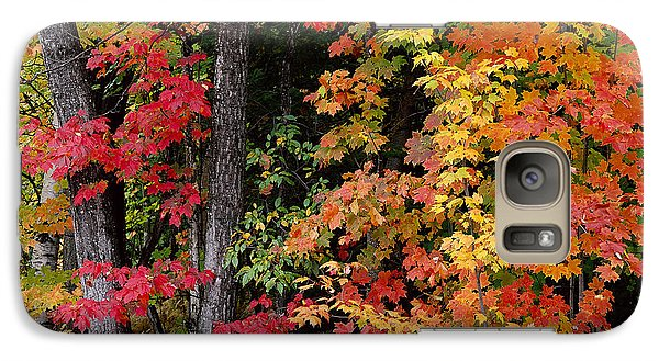 Galaxy Case featuring the photograph Vermont October Woods by Alan L Graham