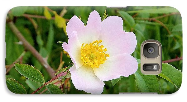 Vert Jaune Rose Galaxy S7 Case