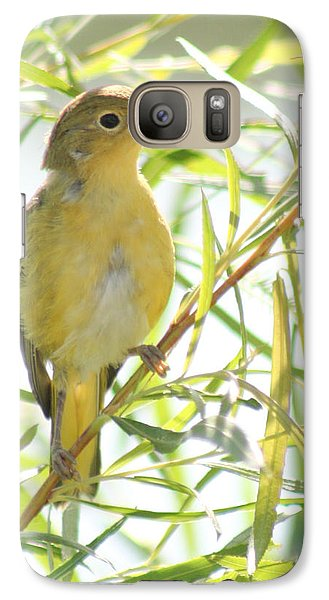 Galaxy Case featuring the photograph Very Yellow Warbler by Anita Oakley