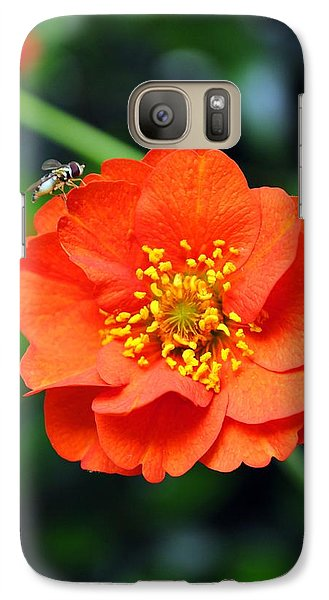 Galaxy Case featuring the photograph Vibrant Pop Of Orange by Kelly Nowak