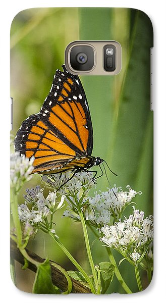 Galaxy Case featuring the photograph Viceroy 2 by Bradley Clay
