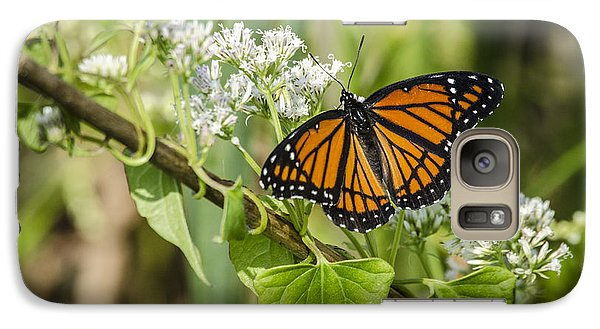 Galaxy Case featuring the photograph Viceroy Butterfly by Bradley Clay